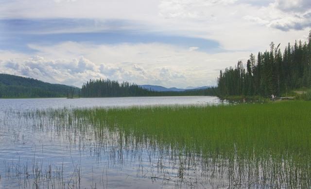 Beautiful lake shore
